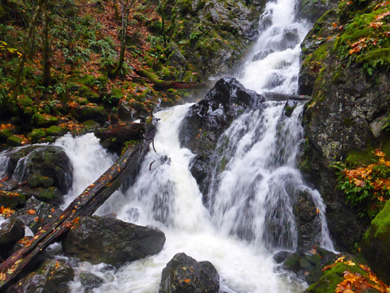 Rodney Falls along the Hamilton Mountain Trail
