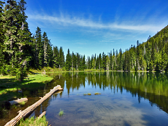 Happy Lake - a popular fishing and backpacking destination in Olympic National Park